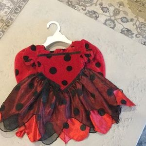Koala Kids Ladybug Halloween Costume- 12 month